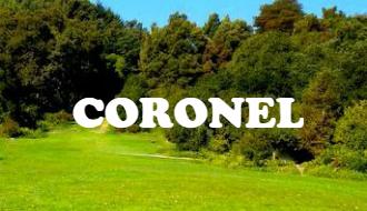 1coronel1