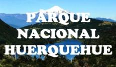 1huerquehue1