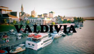 1valdivia1