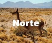 1norte