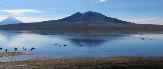 p lago chungara