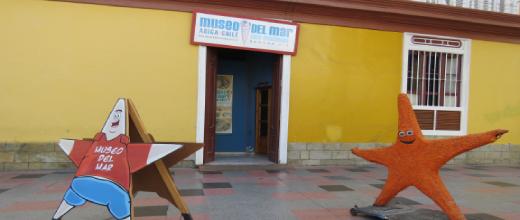 p museo del mar