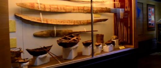p Museo Maggiorino Borgatello