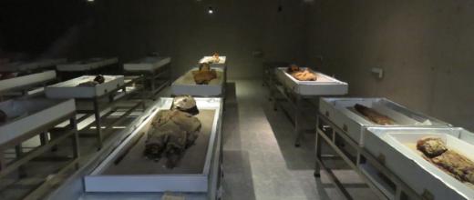 p museo san miguel