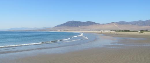 p playa