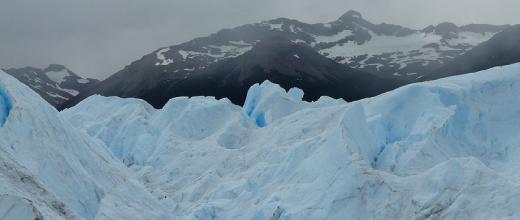 p glaciar leones