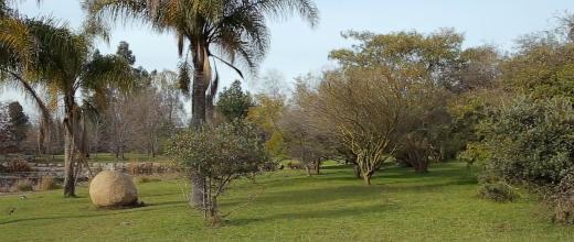 p jardin botanico