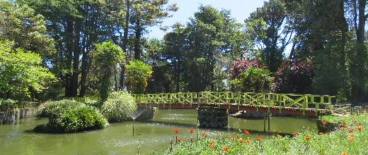 p parque lota