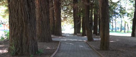 parque iv centenario
