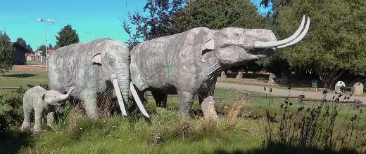 parque pleistocenico