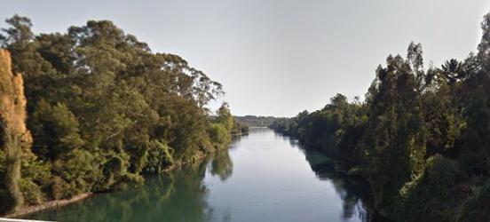 rio bueno